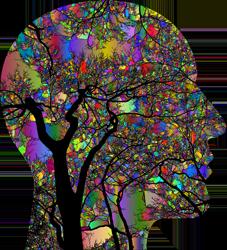 Brain-body-connection