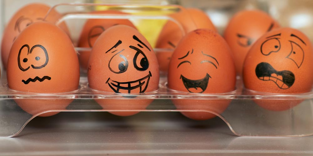 eggs react with fear to being cooked